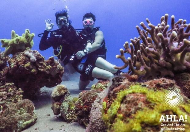 red sea scuba diving in eilat