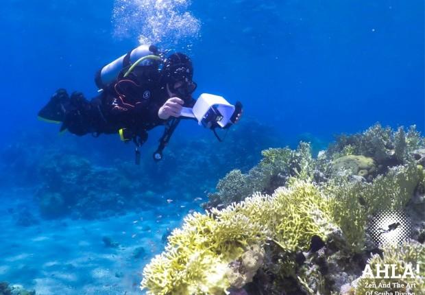 underwater photographer diving course in eilat