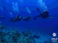 """Discover the incredible underwater world with multilevel diving from """"Ahla Diving Center"""""""
