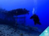дайвинг в эйлате_дайв-сайт Японские сады_צלילה אתר צלילה אילת הגנים היפניים_diving in Eilat dive site Japanese Gardens