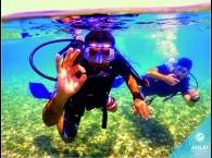 pool diving_צלילה בבריכה_дайвинг курсы в бассейне
