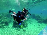 cuba diving beginners_למתחילים צלילה_дайвинг информация для новичков