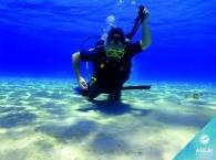 scuba diving information for beginners_ מידע צלילה למתחילים_информация о дайвинге для новичков