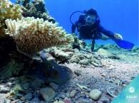 scuba diving introduction_מבוא צלילה_ознакомление со скубо дайвингом в Эйлате