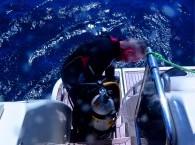 where to learn scuba diving_היכן ללמוד צלילה_где учить дайвинг лучше на русском языке
