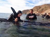 diving club ahla dive eilat