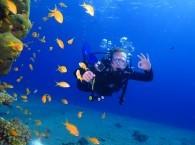 israel scuba diving