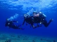 scuba diving vocation