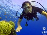 best scuba diving_лучший дайвинг_הצלילה הטובה ביותר
