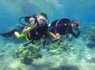 cheap diving holidays_дешевые дайвинг выходные_חגי צלילה זולים