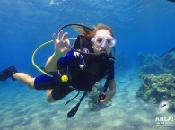 red sea diving holidays_красное море дайвинг каникулы_red sea diving holidays