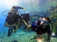 scuba diving destinations_дайвинг направления_יעדי צלילה