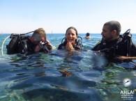 scuba diving in the red sea_скуба дайвинг в красном море_צלילה בים האדום