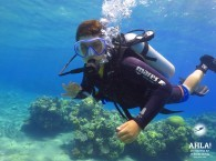 scuba diving information_дайвинг информация_מידע צלילה