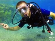 scuba diving padi_дайвинг PADI_PADI צלילה