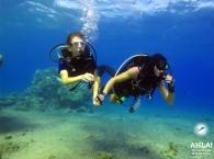 world of diving_мир дайвинга_עולם של צלילה