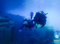 intro dive in red sea eilat israel