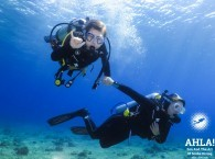 scuba diving for small kids safe in eilat