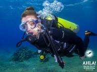 scuba diving tours in eilat