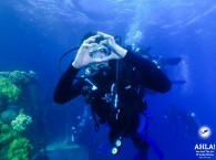 scuba diving with instructor for beginners red sea eilat