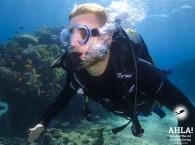 scuba diving trips eilat