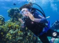 diving red sea eilat israel