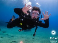 safe diving in eilat red sea