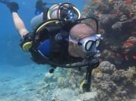 Интро дайв c Ahla Diving