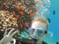 Интро-дайв на Коралловом пляже Эйлата