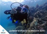Дайвинг в Эйлате на Красном море