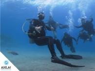 группа Open Water на Красном море c инструктором