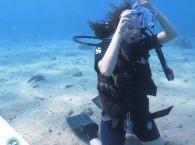 базовое упражнение в дайвинге_basic excersise of diving