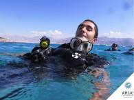дайвинг в январе в Израиле_diving in januare in Israel