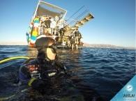 scuba diving in eilat - 4