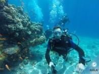 дайвинг курсы в Эйлате на дайв-сайте-Три сестры_diving_course_in_Eilat_dive-site_Three_sisters.jpg