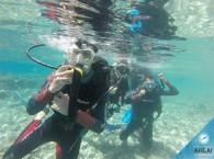 первые погружения на курсе OW_first dives in course Open Water Diver.jpg