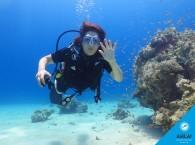 Заниматься дайвингом нужно соблюдая правила_Diving should be abiding by the rules_צליל יש להתנהג לפי הכללי
