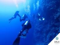 dive guide in diving career