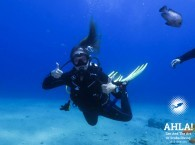 cheap diving holidays red sea eilat israel