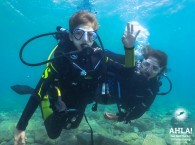 scuba diving with kids eilat red sea