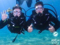 scuba diving holidays in eilat red sea